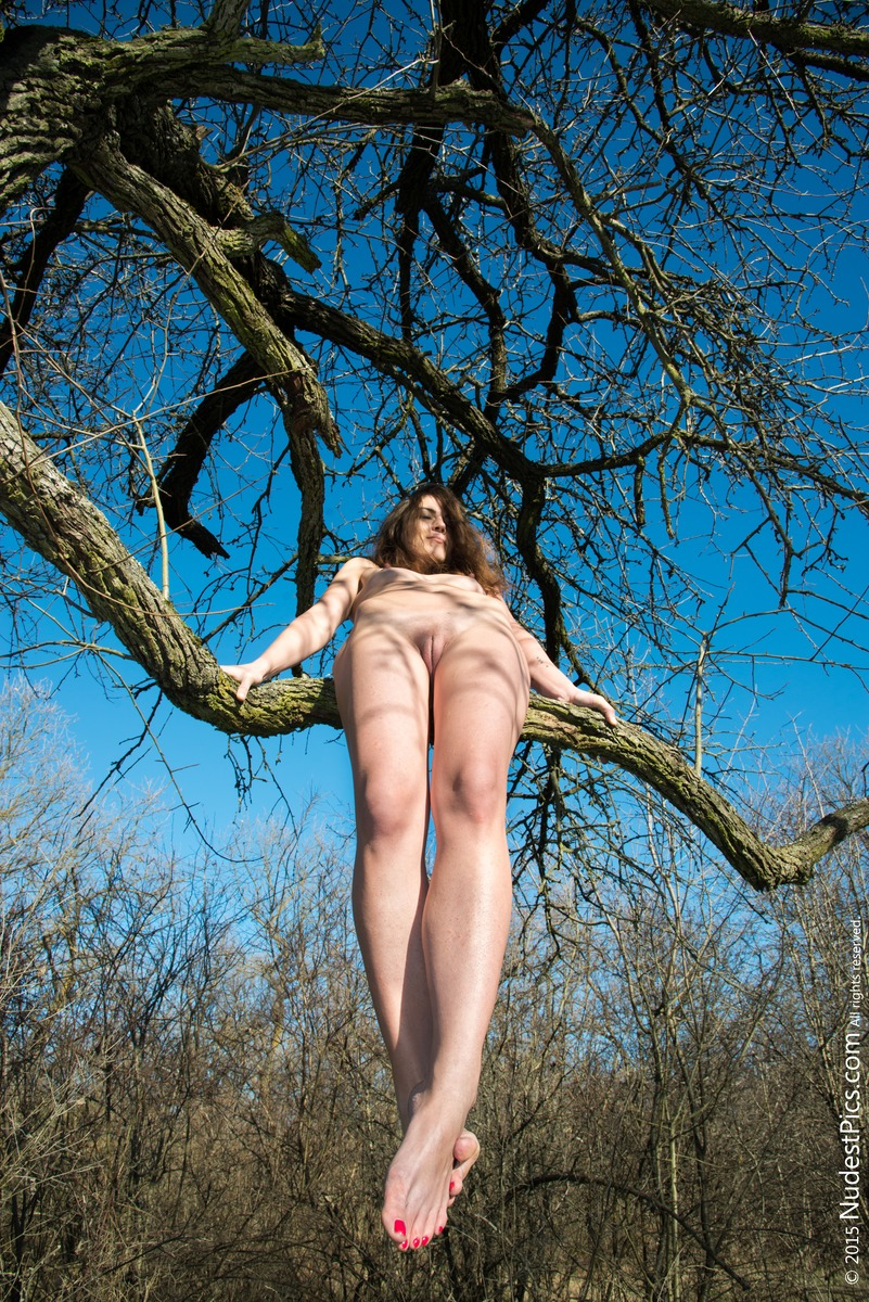 Nude Girl Swinging on Tree's Branch